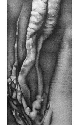 drawing pencil dessin olovka crtež vagina world